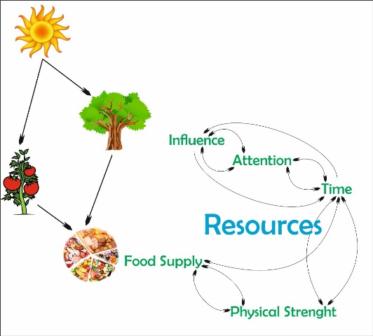 منابع روزگار ما و چرخۀ منابع - اقتصاد تأثیر